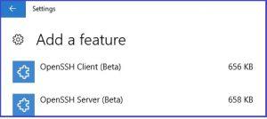 Windows Open SSH